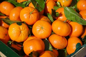 clementines in a box with leaves